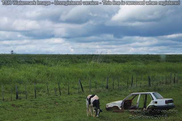 Paraguay Land (4)