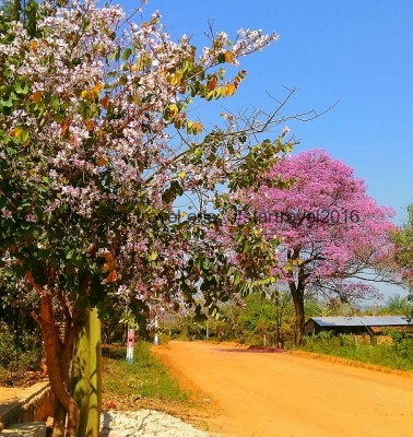 Paraguay leben - erste Schritte