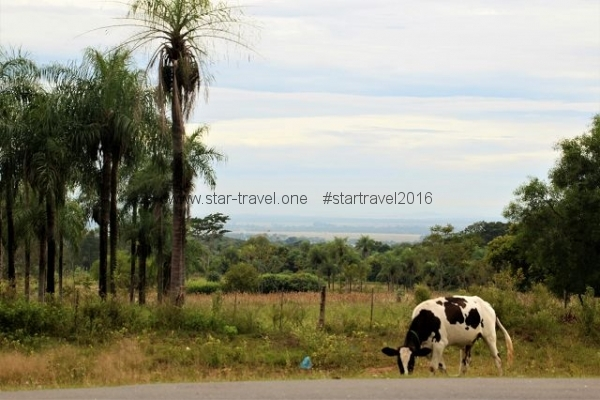 Paraguay, Natur, Offroad, Nationalparks