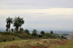 Paraguay Urlaub (4)