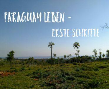 Paraguay leben – die ersten Schritte